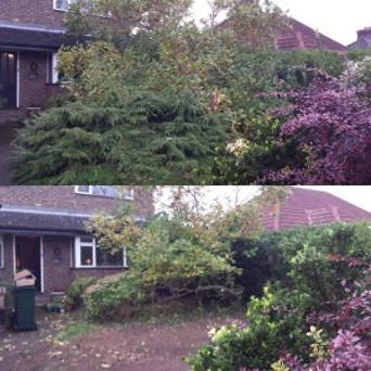 Lustre-gardens-before-and-after-images (5)
